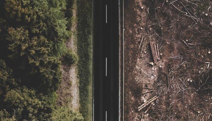 deforestazione-foresta-amazzonica-danni
