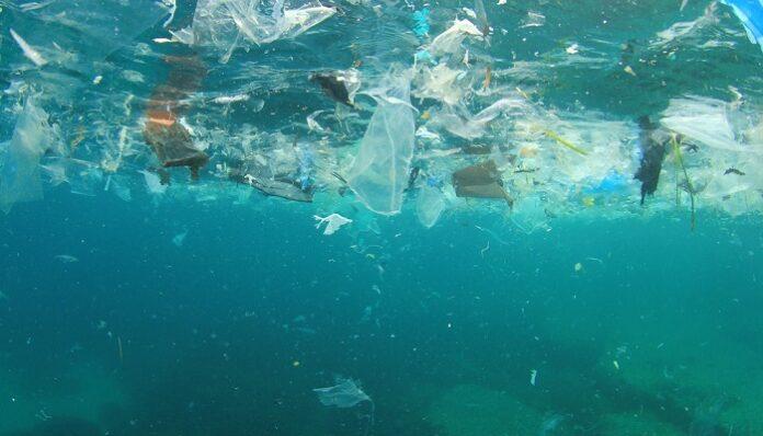 fondale-oceanico-microplastica-inquinamento