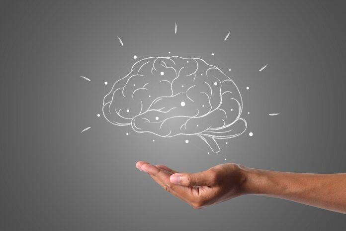 cervello, passato, ricordi