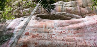 amazzonia, arte rupestre,