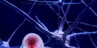 modelli neurosimbolici