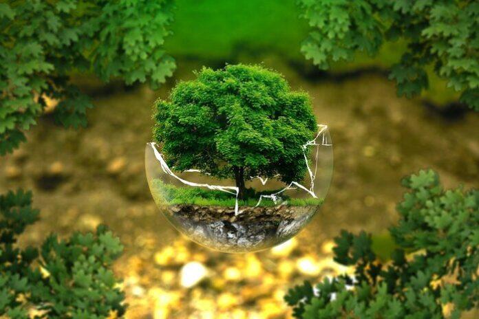 riuso oggetti ambiente