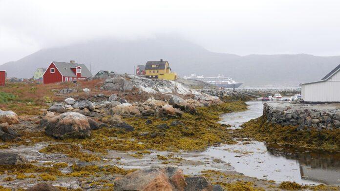 groenlandia, calotta polare, fossili, clima