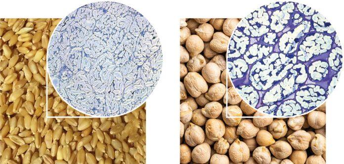 fibre alimentari, lavorazione, materie prime