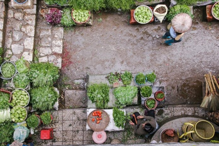 alimentazione prodotti biologici