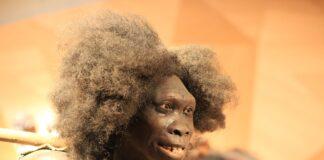 ominidi Neanderthal, europa, comparsa