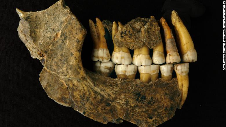 neanderthal resti riesaminati
