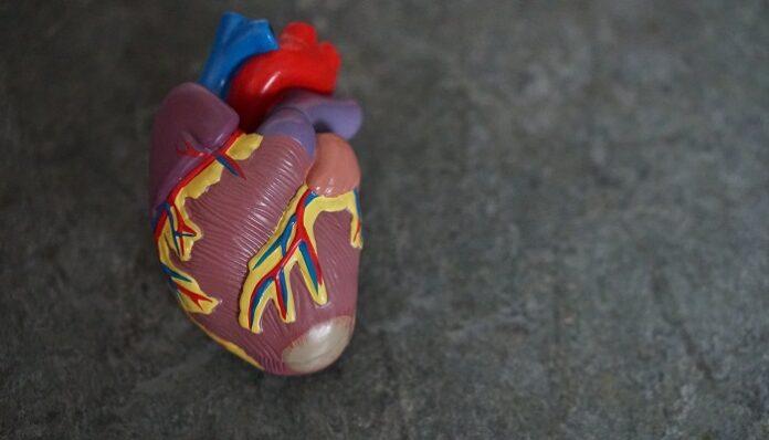 covid-19-rischio-insufficienza-cardiaca-salute