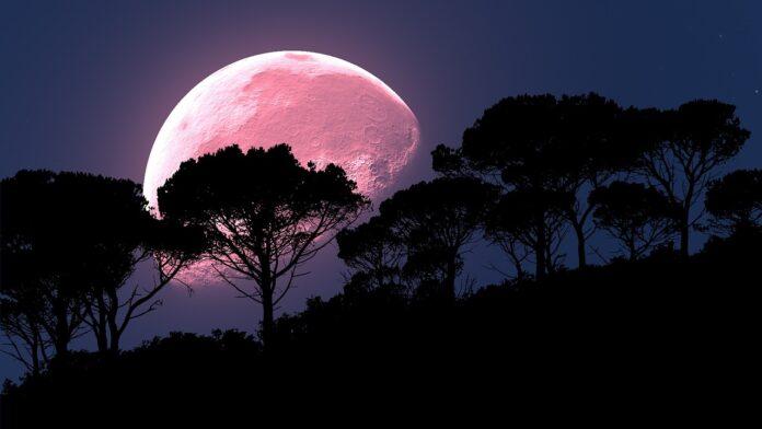 superluna, luna rosa, pink moon
