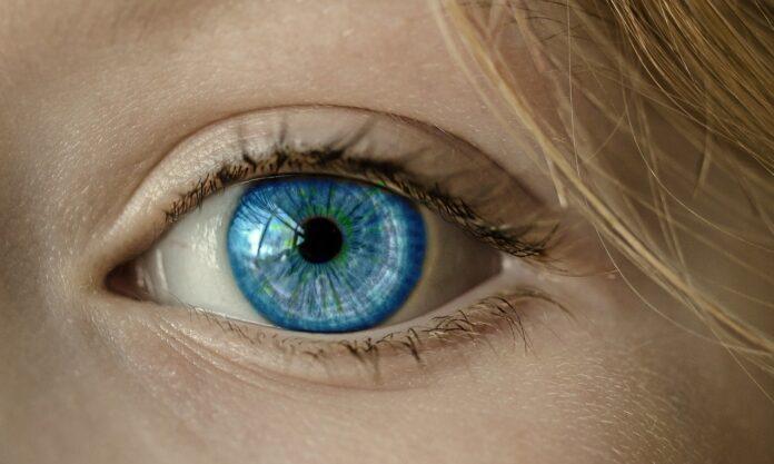 scienziati cecità terapia