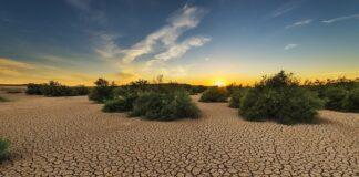 caldo Stati Uniti siccità