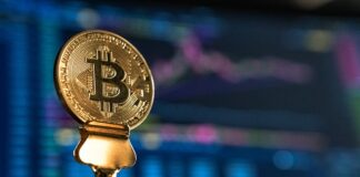 frenesia-bitcoin