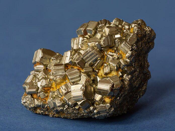oro degli sciocchi