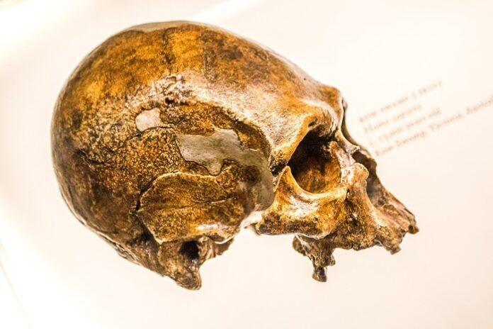 uomo arcaico Israele Neanderthal