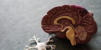 covid-19-problemi-neurologici-guarigione
