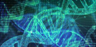 Intelligenza artificiale proteina