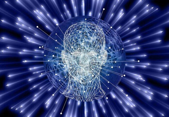 onde cerebrali linguaggio
