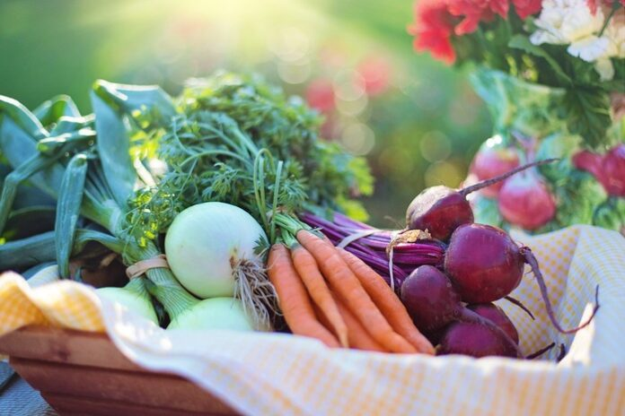 dieta vegetale Covid-19