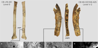 120 mila anni fa